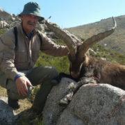 Cazar ibex Gredos