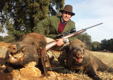 wild boar hunting season in spain