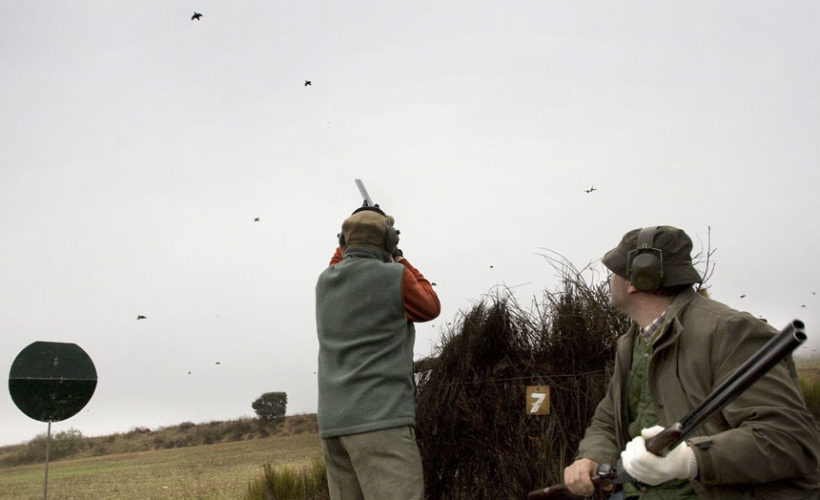 Partridge hunting in Spain